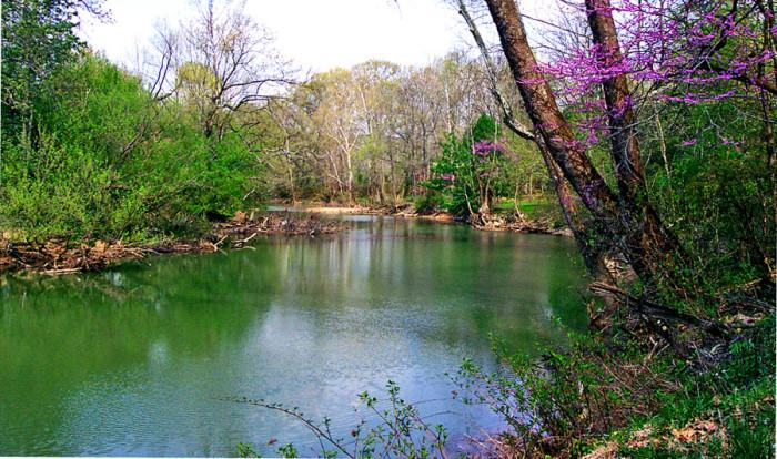 10) Sunfish Creek