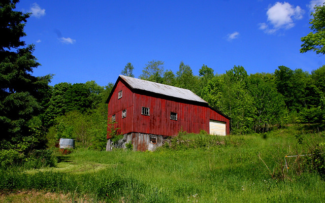 3. This small barn stands out starkly against the surrounding greenery.