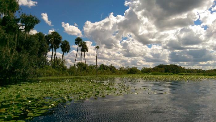 13. St. Johns River, DeBary, FL