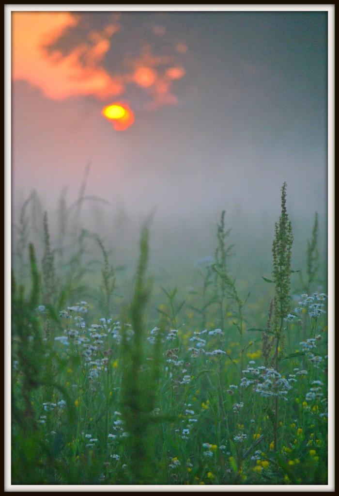 "15. ""Sunrise or Sunset"""