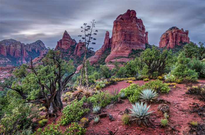 2. Brins Mesa Trail, Coconino National Forest