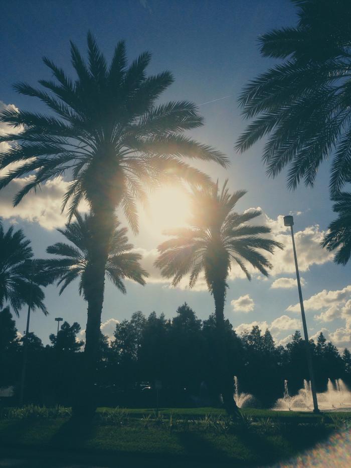 1. Sunshine