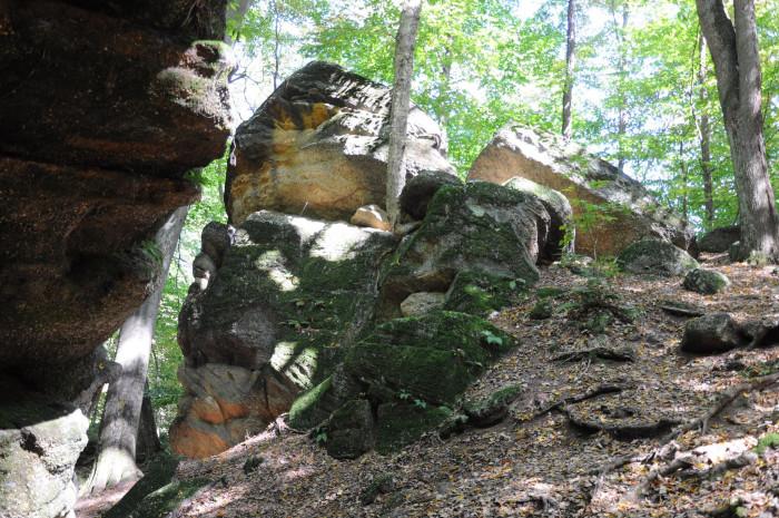 1) Nelson Kennedy Ledges State Park