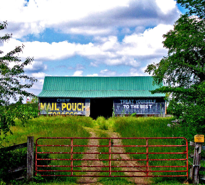 2) Mail Pouch barn along St. Rt 32, west of Givens (Pike County)