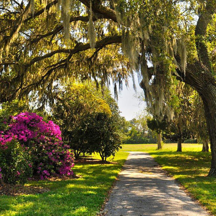10. Charles Pinckney National Historic Site, 1214 Middle Street Sullivan's Island, South Carolina 29482