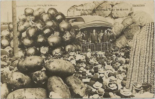 13. Carney (c. 1908)