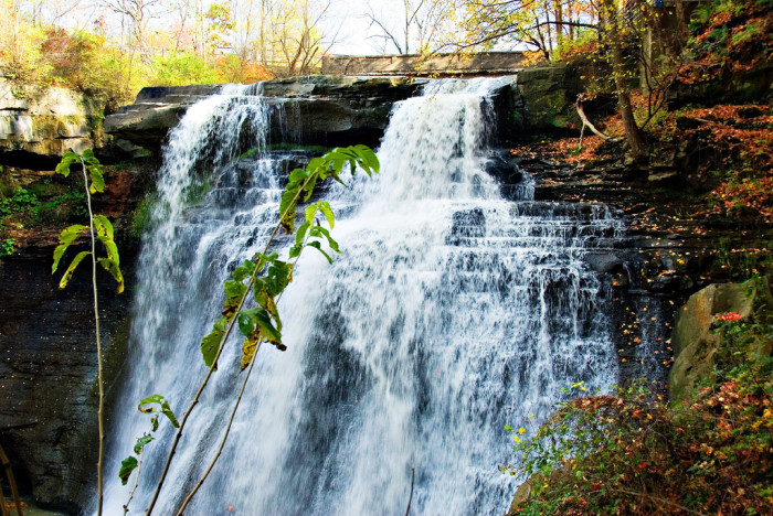 5) Brandywine Falls (Cuyahoga Valley National Park)
