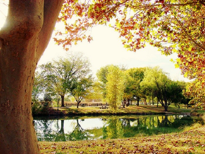 7. Floyd Lamb Park