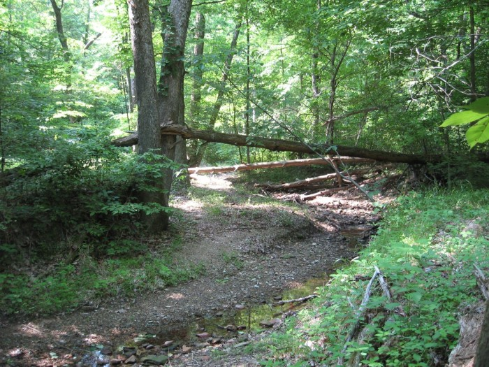 2-Knobstone Trail3