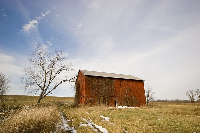 8. This barn looks tiny in comparison to the vast field surrounding it.
