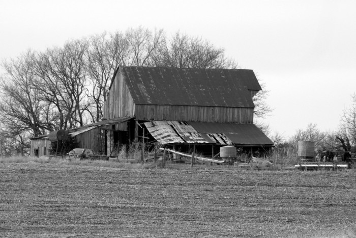 13. A Black and White Masterpiece Near Tecumseh