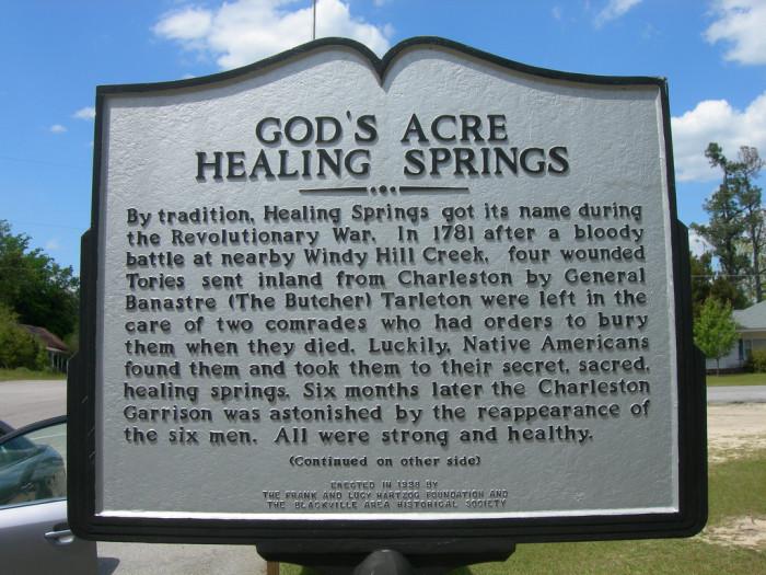 12. God's Acres Healing Springs, Blackville, SC