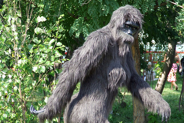 1. Bigfoot shot in Altoona.