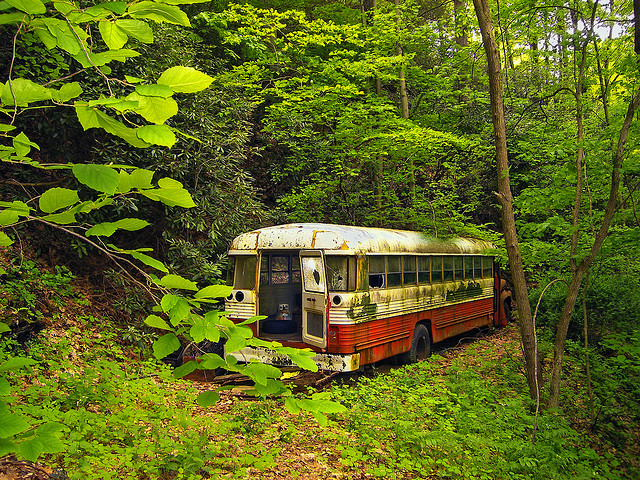 13. This spooky shot of an abandoned bus in the woods in Northampton County.