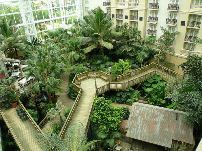 4. The Gaylord Palms Resort  in Kissimmee brought Florida's lush environs indoors with its expansive 4.5-acre Grand Atrium, which includes wildlife such as turtles and alligators.