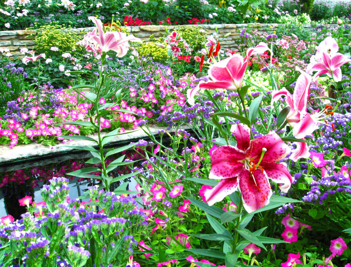 2 The flowers in the sunken garden are bright and beautiful.