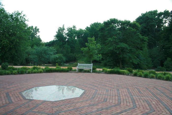 11. Live around the Aiken area? You can use Hopeland Gardens for that special place or for a flash mob style proposal!