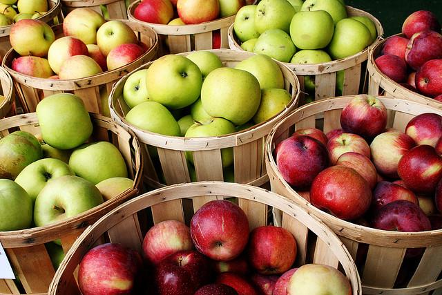 1. Spend a crisp fall afternoon picking way more apples than you'll ever manage to eat.