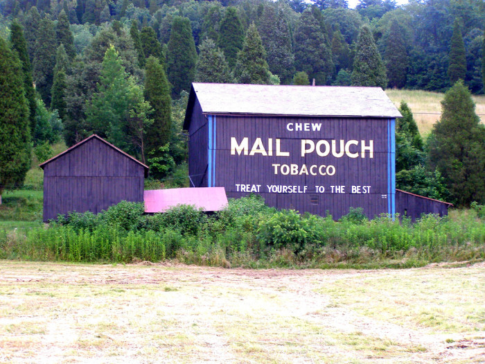 18) Mail Pouch barn just north of Marietta along St. Rt. 60 (Washington County)