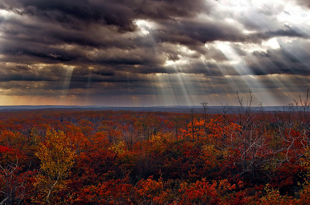 18. These heavenly shafts of light beaming from a moody sky.