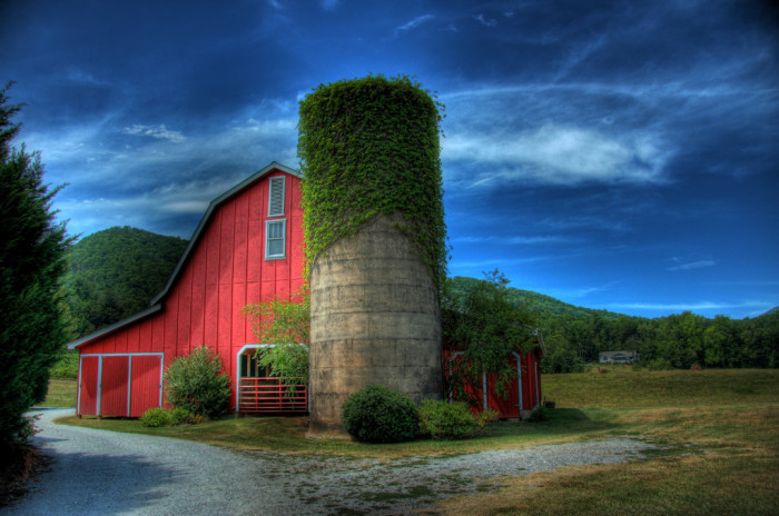 9) Wine Barn in North Georgia