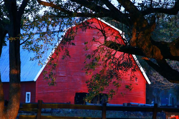 4) Stanton's Red Barn (Alvin)