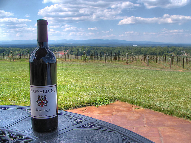7. Experience truly unique scenery in North Carolina's own little 'wine country'