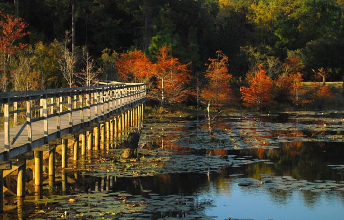 9. A beautiful autumn sunset in Mobile, Alabama.