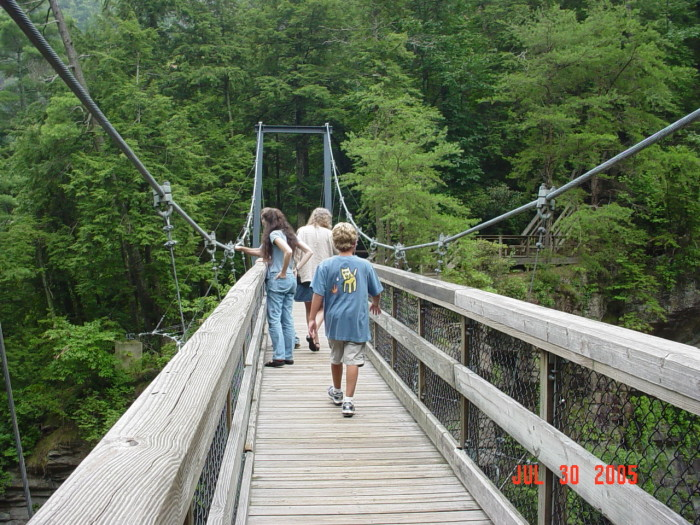 1) Tallulah Gorge Bridge - 338 Jane Hurt Yarn Rd, Tallulah Falls, GA 30573