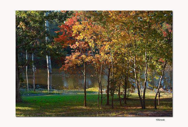 2. Kiroli Park (West Monroe)