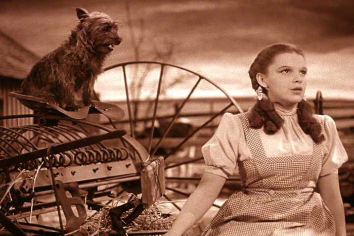 2. Judy Garland - An amazing actress and most recognized from The Wizard of Oz.