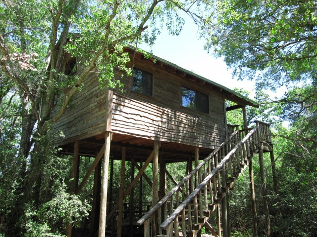 9) Treehouse at Scenic Hill Vacations (Brenham)