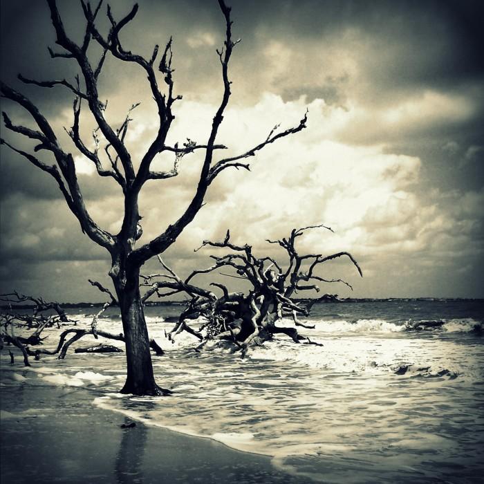 1. Boneyard Beach on Bull Island, SC