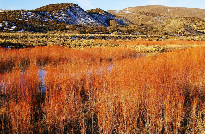 5. Pine Valley, Nevada