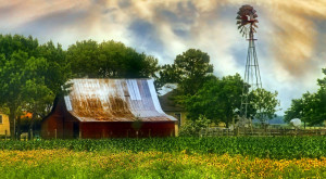 You Will Fall In Love With These 18 Beautiful Old Barns In Texas