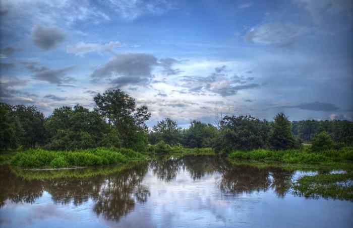 3. The pond at Langan Municipal Park in Mobile, Alabama.