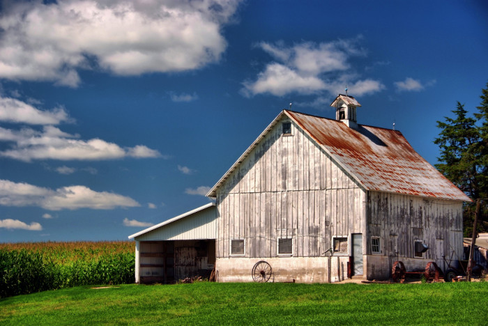 3. This white-washed gem  stands out against a bright green field near Williamsburg