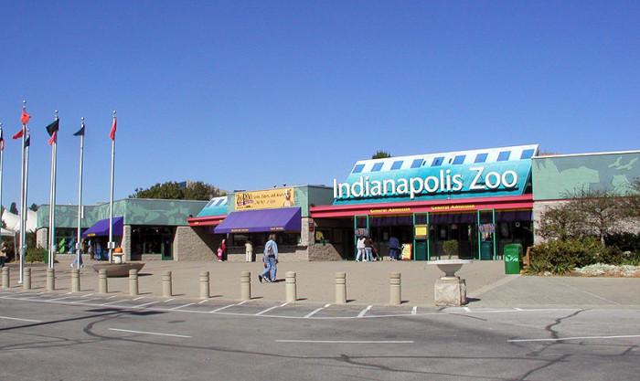 In Zoos