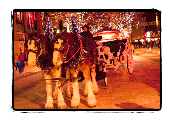 1.) 16th Street Mall Carriage Ride (Denver)