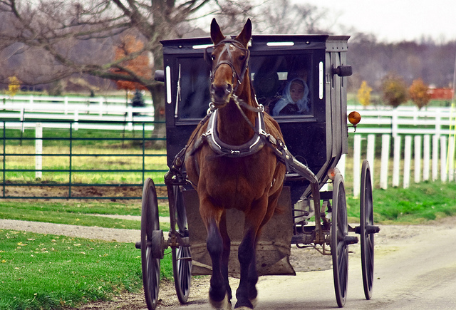 1. When you got stuck in traffic, chances are it's thanks to a horse and buggy.