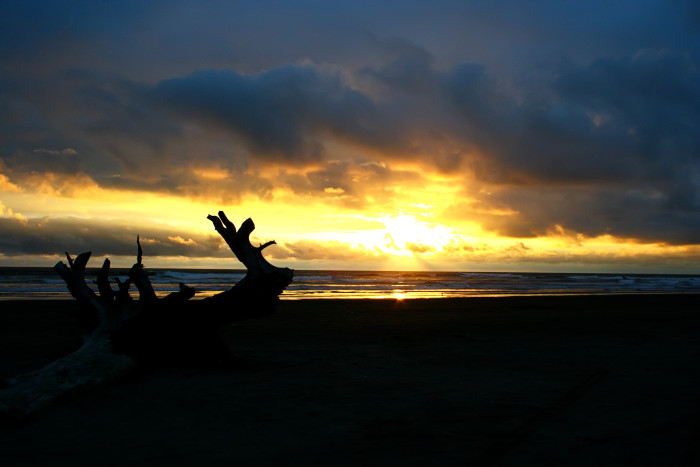 You'll always be able to catch a flawless sunset in Ocean Shores!
