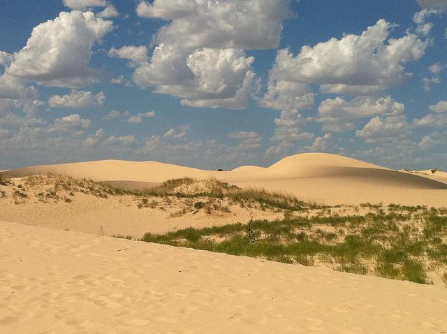 9) Monahans Sandhills State Park (Monahans)