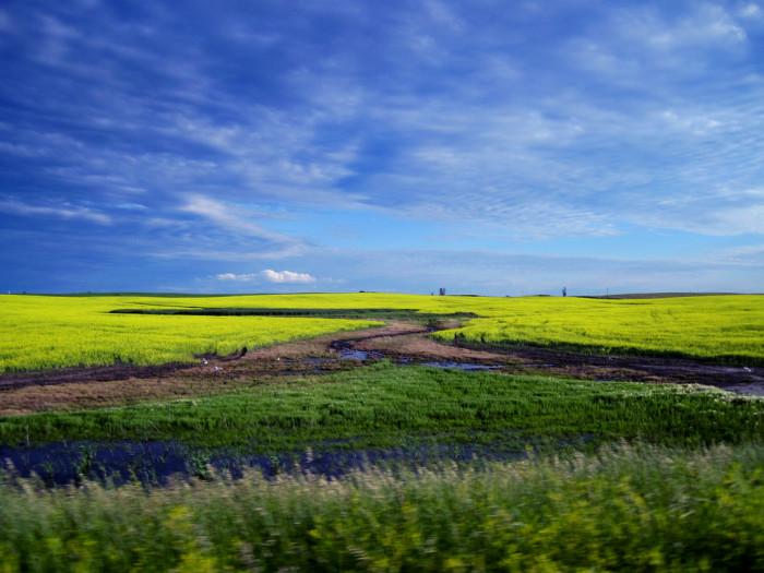 5. The backroads of Minot, North Dakota.