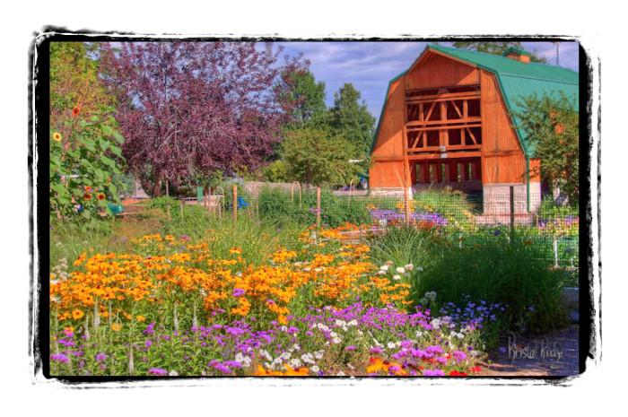 5.) Castlewood Garden Barn
