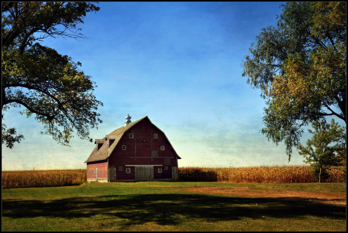 4. This classic red barn sits in an autumn field on  a crisp fall day