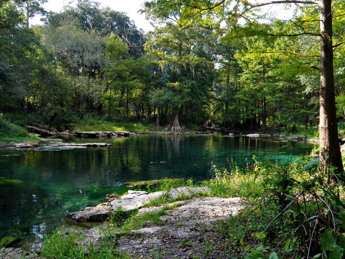 2. Peacock Springs
