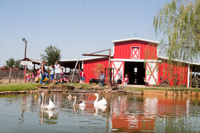 11) Red Barn at Dewberry Farm (Brookshire)