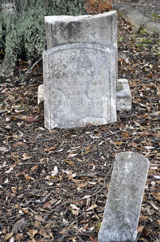 12. Parks Cemetery, Summerville, SC