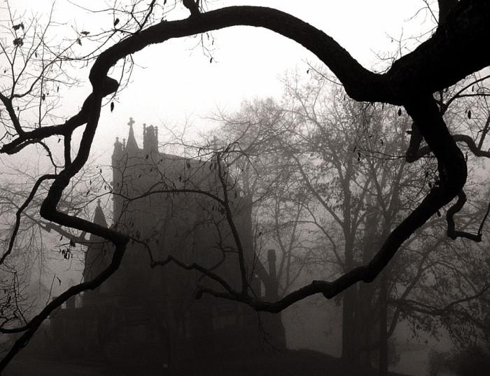 11) Foggy morning at Spring Grove Cemetery (Cincinnati)