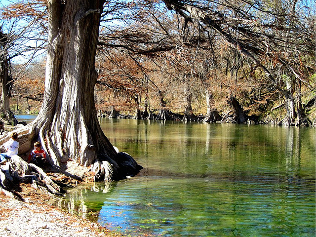19) Guadalupe River State Park (Spring Branch)
